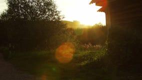 Luz del sol y paisaje rural escénico en puesta del sol en Altai, Rusia metrajes