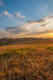 Luz do amanhecer na Toscânia Foto de Stock Royalty Free