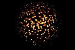 Luz do bokeh da flor Fotos de Stock