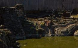 Luz do dia do verão da mola da lagoa da cidade Fotografia de Stock Royalty Free