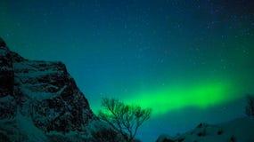 Luz do norte de Tromsø com a montanha no primeiro plano imagem de stock royalty free