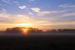 Luz do sol do amanhecer sobre uma exploração agrícola em Florida, Estados Unidos fotos de stock