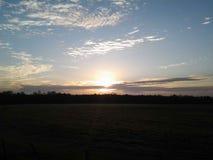 Luz do sol da boa manhã Foto de Stock