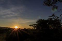A luz do sol da estrela Imagem de Stock Royalty Free