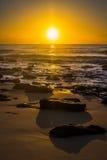 Luz do sol da manhã Fotografia de Stock