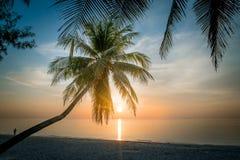 Luz do sol do mar Imagem de Stock