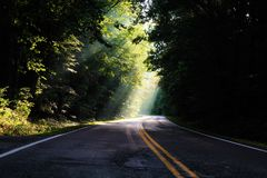 Luz do sol e backroads Imagem de Stock Royalty Free