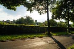 Luz do sol em minha maneira Fotos de Stock Royalty Free