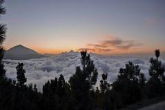 Luz do sol em Tenerife Imagem de Stock Royalty Free