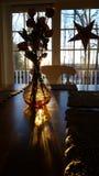 Luz do sol floral fotografia de stock