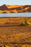 luz do sol na duna de areia amarela de Marrocos do deserto Imagens de Stock Royalty Free