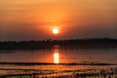 Luz do sol na noite Imagens de Stock Royalty Free