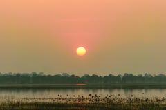 Luz do sol na noite Fotografia de Stock Royalty Free