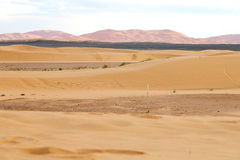 luz do sol no deserto da areia e da duna de Marrocos Fotos de Stock