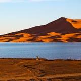 luz do sol no deserto do amarelo do lago da areia e da duna de Marrocos Imagens de Stock Royalty Free