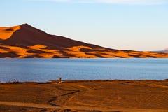 luz do sol no deserto do amarelo do lago da areia e da duna de Marrocos Foto de Stock Royalty Free