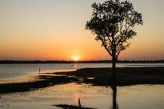 Luz do sol no rio Fotos de Stock