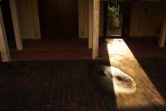 A luz do sol obtém com a obscuridade fotografia de stock