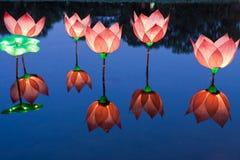 Luz dos lótus na lagoa Fotografia de Stock Royalty Free