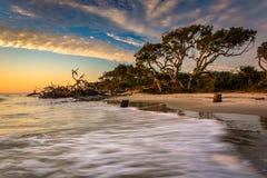 A luz e as ondas da manhã na madeira lançada à costa encalham, no Ocea atlântico Imagens de Stock Royalty Free