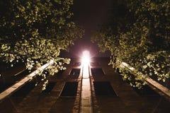 Luz en la construcción de viviendas que brilla abajo entre los árboles Fotos de archivo libres de regalías