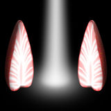 Luz entre as duas metades das morangos Imagem de Stock