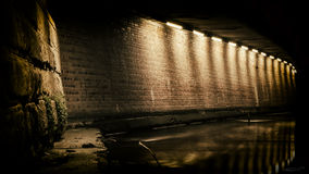 Luz escura Imagens de Stock