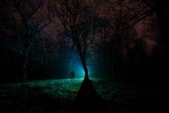 luz estranha em uma floresta escura na noite Silhueta da pessoa que está na floresta escura com luz Noite escura na floresta na n Imagens de Stock Royalty Free