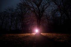 luz estranha em uma floresta escura na noite Silhueta da pessoa que está na floresta escura com luz Noite escura na floresta na n Fotografia de Stock Royalty Free