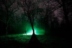 luz estranha em uma floresta escura na noite Silhueta da pessoa que está na floresta escura com luz Noite escura na floresta na n Imagem de Stock Royalty Free