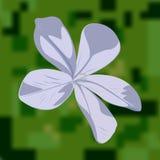Luz - flor azul ilustração royalty free