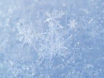 Luz - fundo azul da neve com flocos de neve brancos Fotos de Stock