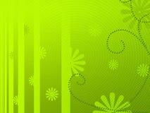 Luz - fundo floral verde Foto de Stock