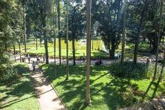 Luz Garden foto de archivo libre de regalías