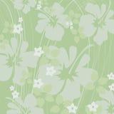 Luz - hibiscus verde Foto de Stock Royalty Free
