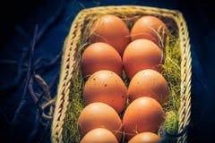Luz místico dos ovos da páscoa da composição da Páscoa Fotografia de Stock