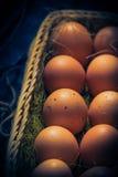 Luz místico dos ovos da páscoa da composição da Páscoa Imagens de Stock