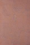 Luz - matéria têxtil marrom do réptil Imagens de Stock Royalty Free