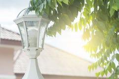 Luz na cerca Imagens de Stock