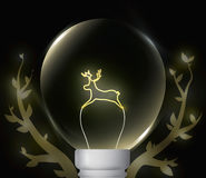 Luz natural imagens de stock royalty free