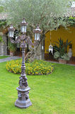 Luz no jardim Imagem de Stock