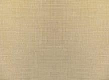 Luz - o sumário marrom recicla o teste padrão de papel na textura do fundo da tela do laço, estilo do vintage Imagens de Stock Royalty Free