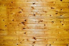 Luz - painel marrom da madeira do wainscoat Fotos de Stock