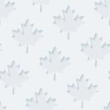Luz - papel de parede cinzento das folhas de bordo Foto de Stock