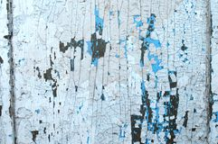 Luz pintada de madeira velha - fundo rústico azul, casca da pintura Imagem de Stock Royalty Free