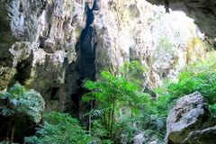 Luz que brilla en el bosque en una cueva Imágenes de archivo libres de regalías