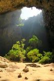 Luz que brilla en la selva en una cueva Fotografía de archivo libre de regalías