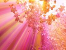 Luz rosada de la nube de la flor Foto de archivo libre de regalías