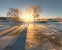 Luz solar brilhante do inverno Brilho de Sun em testes padrões do gelo Sunny Christm Fotografia de Stock