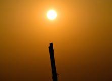 Luz solar com fotografia do objeto Fotografia de Stock